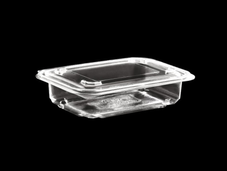 250 ml Food Container With Hinged Lid - Plain, Flat